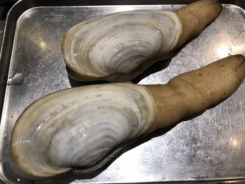 長崎産ミル貝